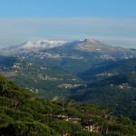 Lebanon-rabiem22