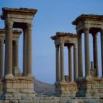 Palmyra CazzJj