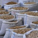 Samarkand_market_Stefan_Fotos